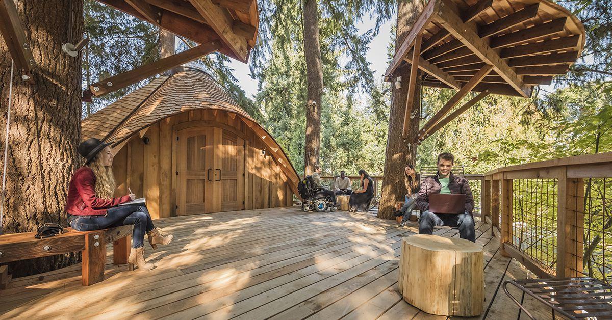 microsoft-tree-house